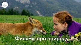 Познавательный досуг для взрослых и детей: документальные и художественные фильмы о природе, которые можно посмотреть онлайн